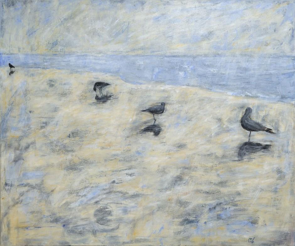 Vögel im Watt